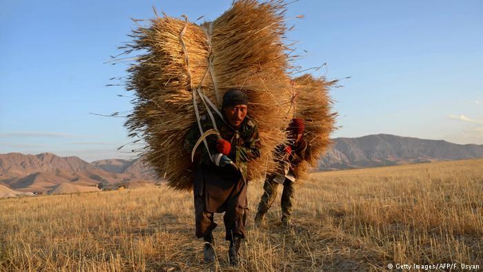 محمد اشرف غنی، رییس جمهوری افغانستان در این نشست حاشیهای تاکید کرد که تولیدات کشاورزان زیاد است، اما حکومت باید برای این تولیدات بازاریابی کرده و زمینه صادرات محصولات آنان را به کشورهای منطقه و کشورهای اروپایی فراهم کند