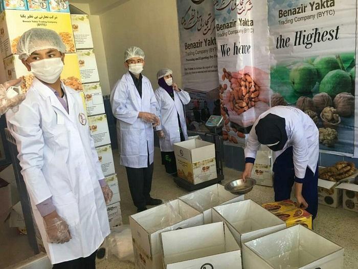 در شرکت بینظیر یکتا 80 زن به صورت غیرمستقیم در ولایات و کابل و همچنین 5 مرد نیز در شهر کابل در قسمت پروسس و بستهبندی میوهجات کار میکنند