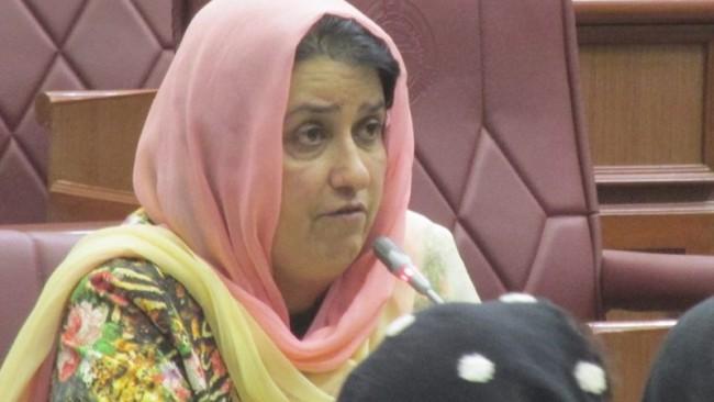 رحیمه جامی، یک عضو مجلس نمایندگان از ولایت هرات