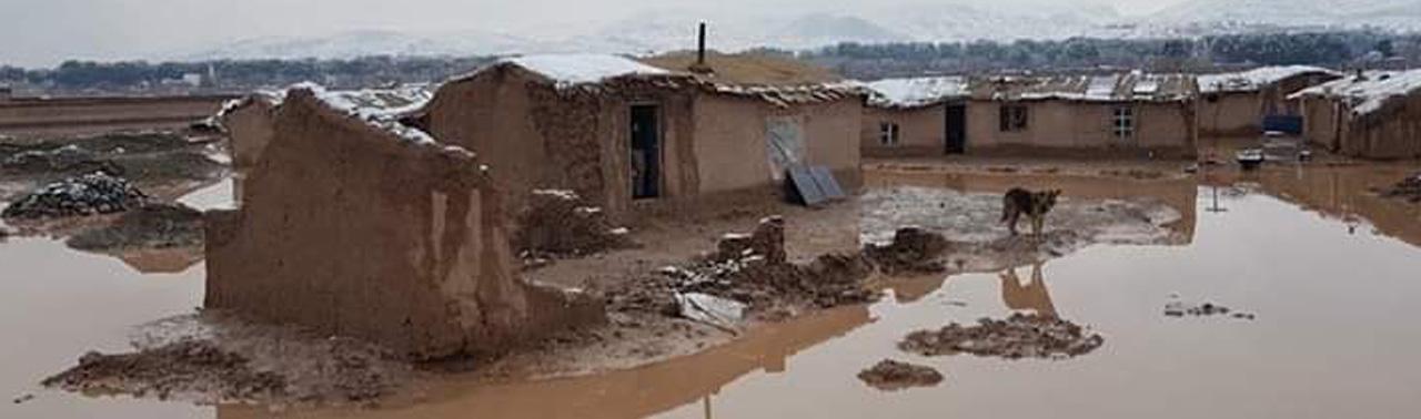 از هرات تا بلخ؛ بارش شدید باران و خسارات هنگفت مالی و جانی به شهروندان افغانستان
