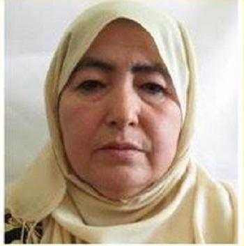 Hamida akbari (2)