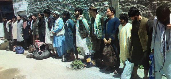 19 prisoners were released from Parwan Prison