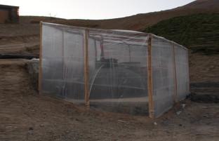 بیوگاز؛ راه نو برای گاز دار شدن خانه های روستایی افغانستان