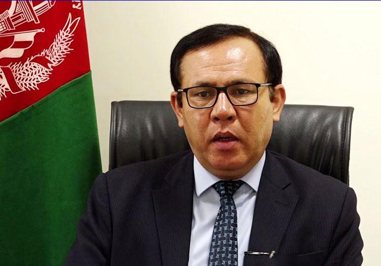 نعیم نظری، معاون کمیسیون حقوق بشر افغانستان