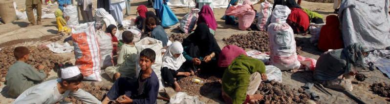 آیا صلح در افغانستان نزدیک است؟ ارزیابی فرآیند صلح