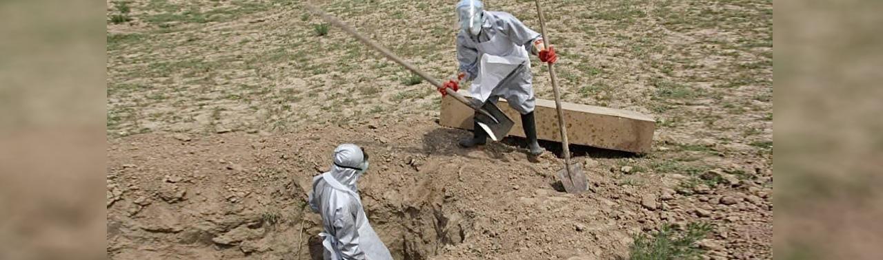 جان باختن ۴۵ فرد مبتلا به ویروس کرونا  و بهبود بیش از یک هزار و ۵۰۰ تن در ۲۴ ساعت در افغانستان