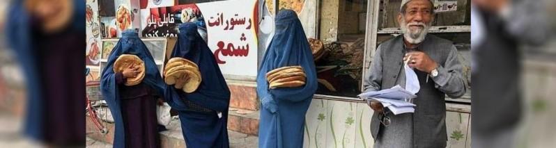 جنجال نان خشک؛ شهرداری کابل: ۱۱۷ میلیون قرص نان درشهر کابل توزیع شده است