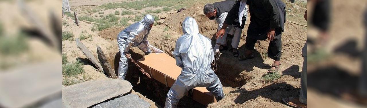 جان باختن ۴ مورد مبتلا به کرونا در هرات؛ وزارت صحت در ۲۴ ساعت هیچ مورد فوتی ثبت نشده است