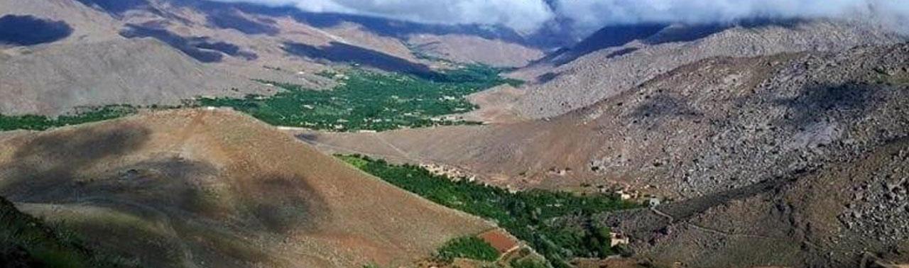 حمله طالبان بر ۳ ولسوالی دایکندی؛ این ولایت با کمبود پرسونل امنیتی مواجه است