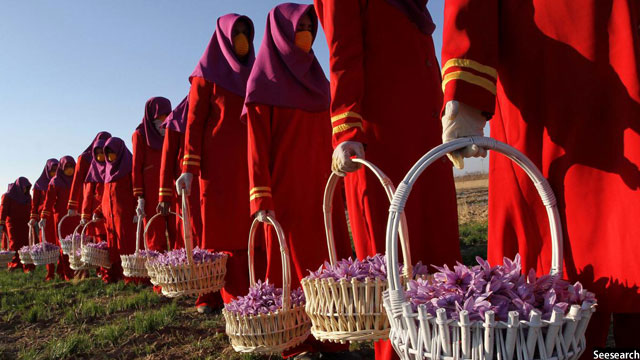 پیش از این نیز زعفران افغانستان به عنوان یکی از بهترین انواع زعفران ها در جهان شناخته می شود