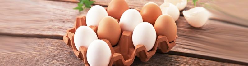 سلامتی خود را بیمه کنید؛ ۹ نکته که تا به حال درباره تخم مرغ نمیدانستید