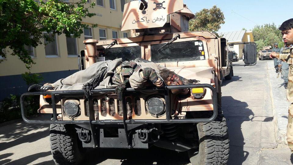 dead taliban