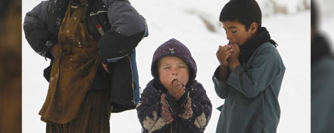 تلاش های بی نتیجه برای کاهش قیمت گاز مایع؛ آیا هوای کابل همچنان آلوده خواهد ماند؟