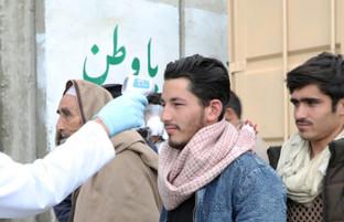 روزنگاری کرونا ویروس در افغانستان (۳۶)؛ ۲۸۵ مورد جدید و بیش از ۴۰۰۰ هزار مورد ابتلا به کوید-۱۹
