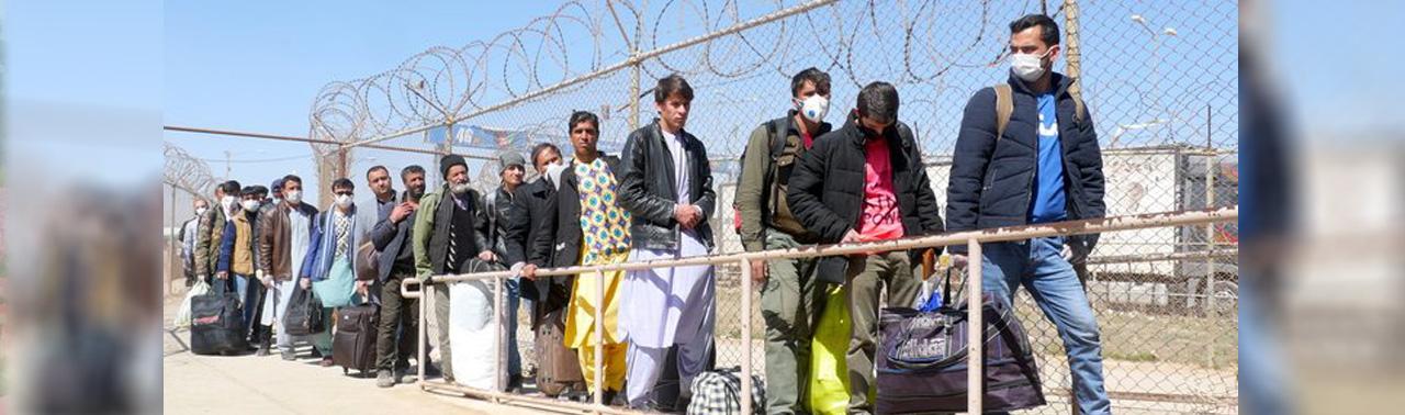 کرونا ویروس و بازگشت پناهندگان افغان؛ آیا میزان مهاجران کرونایی در مرزها شناسایی شده اند؟