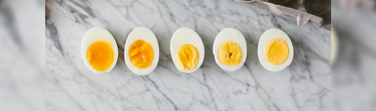 اگر روزی یک تخم مرغ بخورید، این اتفاق برای بدن تان رخ می دهد