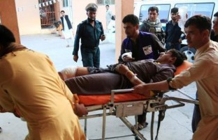 انتقاد از افزایش خشونت ها؛ نادری: پس از امضای توافقنامه دوحه یکهزار ۵۲۳ غیرنظامی کشته شده است