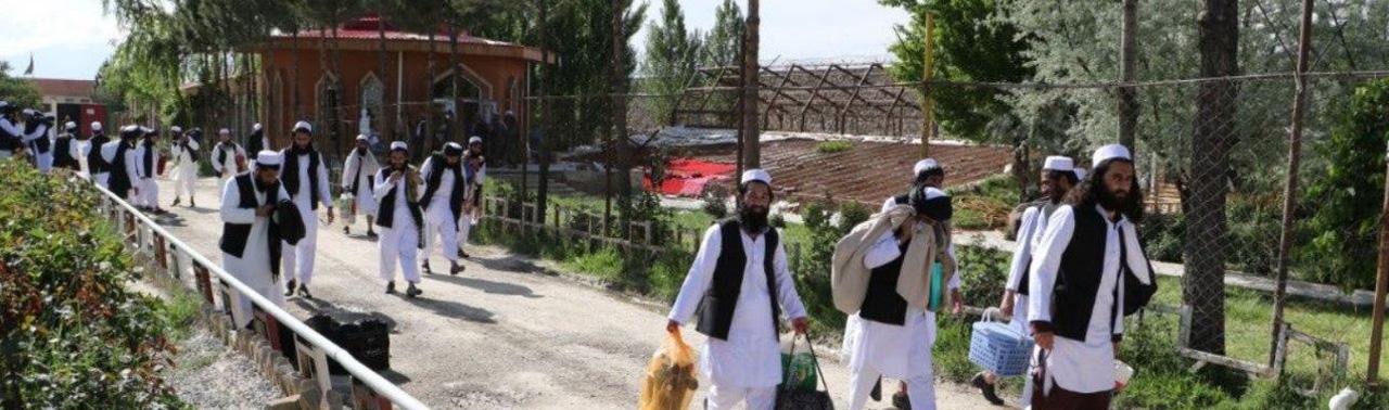 طالبان: زندانیان رها شده این گروه به میدان جنگ بر نگشته اند