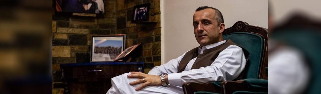 صالح: طالبان مانند ملخ حمله می کنند و می میرند