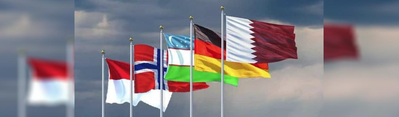 ایجاد کمیته ترتیب آجندای مذاکرات صلح؛ آلمان، قطر، ناروی، اندونزی و ازبکستان خواهان کاهش خشونت ها شد