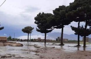 سرازیر شدن سیلاب ها؛ تنها در هرات، غور و بامیان ۳۰ تن جانباخته اند