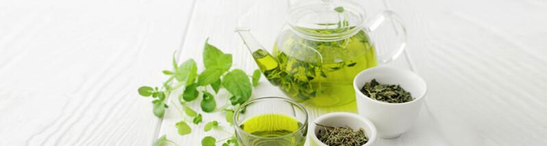 سم زدایی با چای سبز: ۶ مهمترین مزایای پاکسازی بدن با استفاده از چای سبز