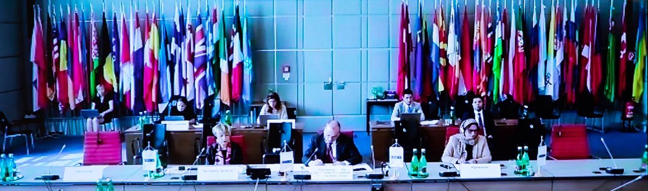 سازمان امنیت و همکاری اروپا و شرکای آسیایی اش اوضاع امنیتی افغانستان را بررسی کردند